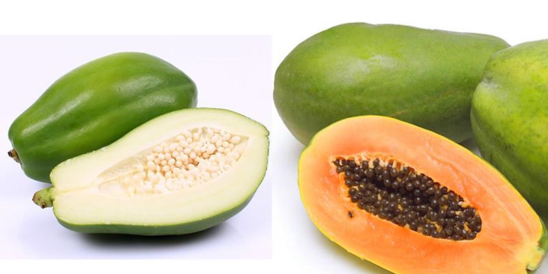 Cách phá thai bằng rau ngót, rau má, rau răm, đu đủ xanh